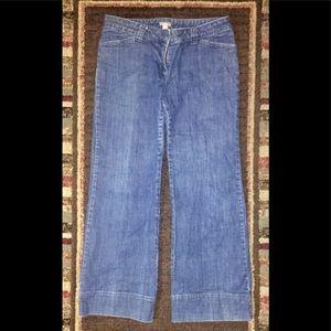 J. Jill Stretch Jeans